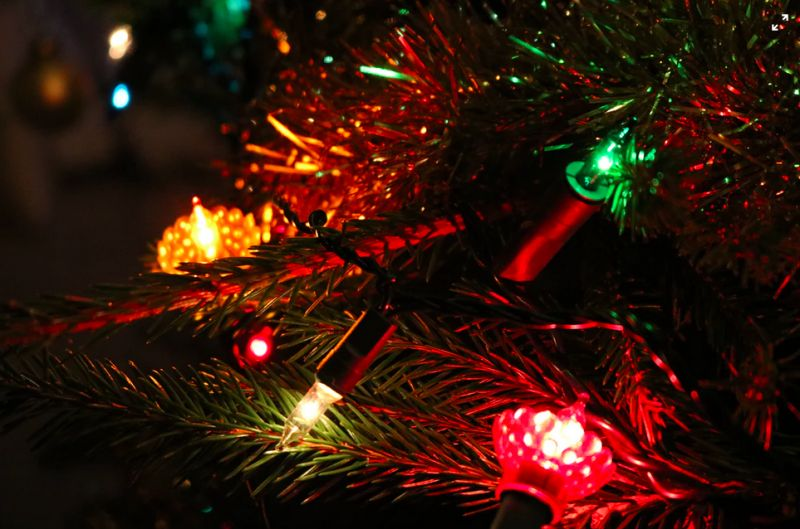 Light Up Your Christmas Tree Knights Garden Centres