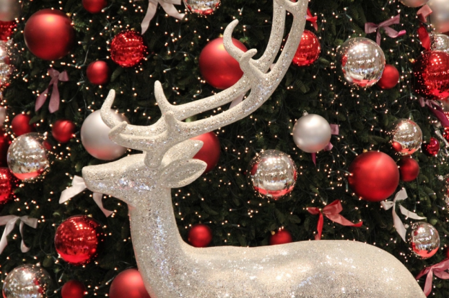 Christmas Decorations Knights Garden Centres